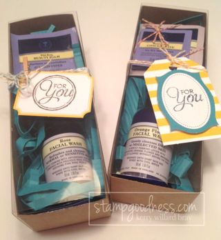 Tag a Bag Gift Boxes Stampin' Up!