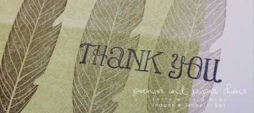 Stampin' Up! Lots of Thanks note card by Kerry Willard Bray www.peoniesandpaperchains.com